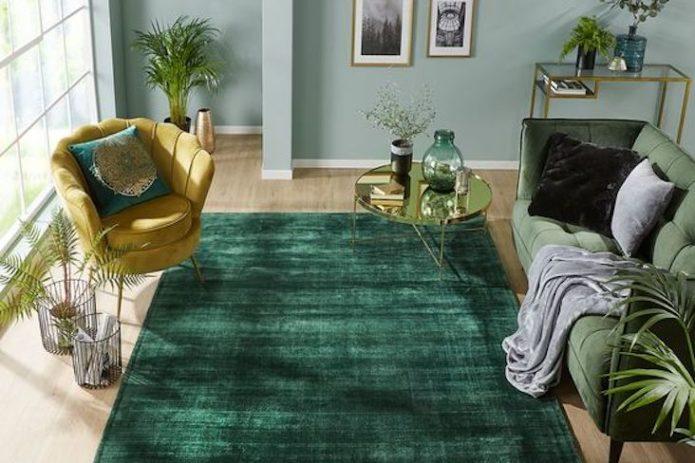 salon tapis vert inspiration deco idee conseils séjour chambre à coucher