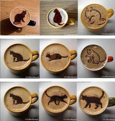 samedi 16 mai Chat-cafe-matin