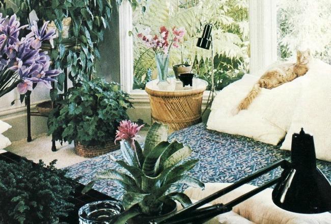 10 idees pour mettre des plantes dans son interieur