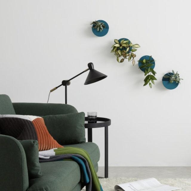 cache pot plante verte bureau decoration 6