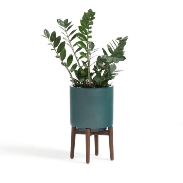 cache pot plante verte bureau decoration 9