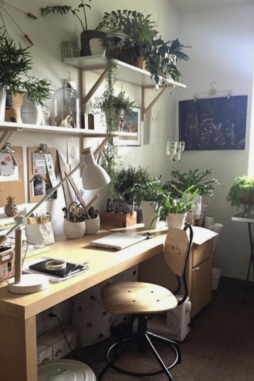 decorer le bureau avec des plantes 5