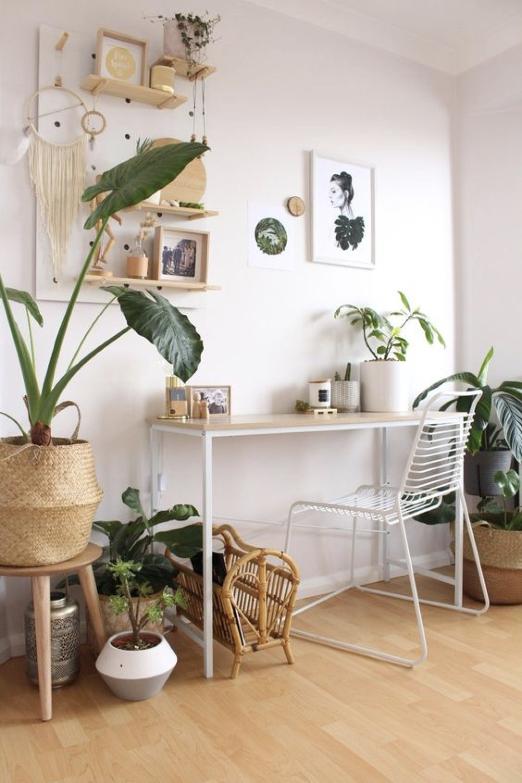 decorer le bureau avec des plantes 8
