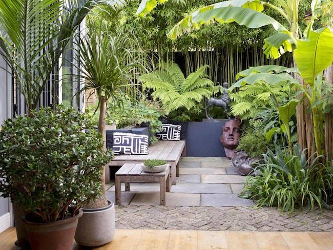 Idee decoration jardin exotique jungle