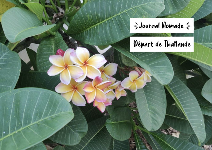 journal nomade depart thailande