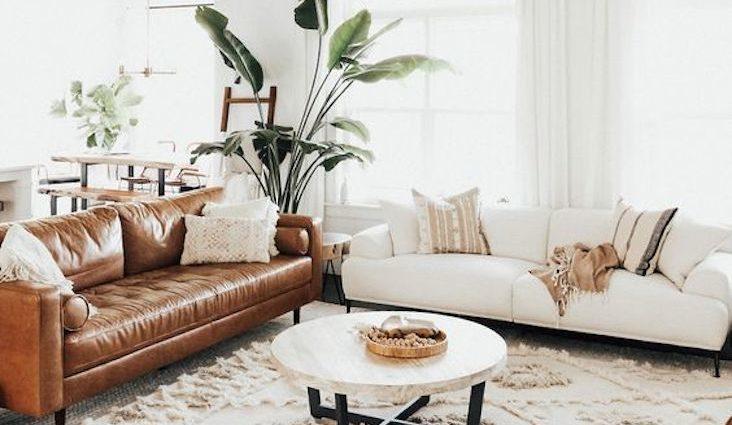 salon blanc decoration style