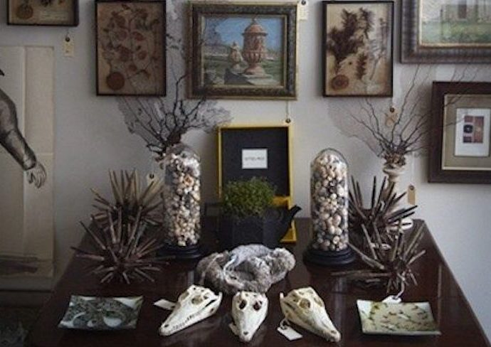 decoration style rock cabinet curiosite conseils exemple idee deco originale